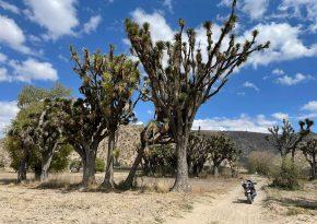 По Мексике на мотоцикле часть 2